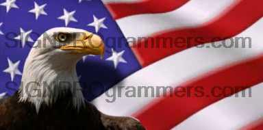 09-011 EAGLE FLAG BACKGROUND 192×384 RGB