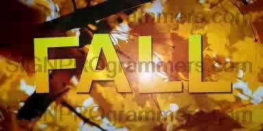 WM 18-004 FALL 192×384 RGB